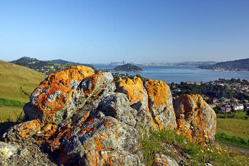 Richardson Bay from Ring Mtn.
