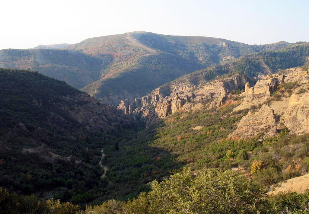 Salt Creek Peak (UT)