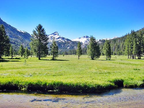 Upper Piute Meadows