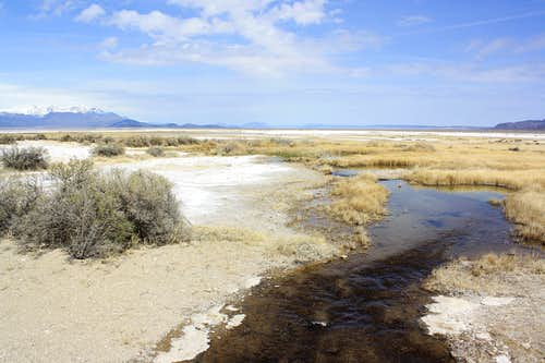Where Borax Lake flows into the desert