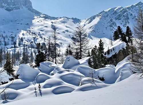 Snowshoeing around Croda da Lago on the way to Passo Giao