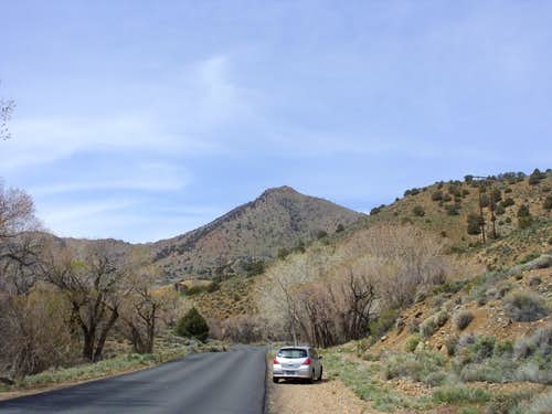 Flowery Peak from the east