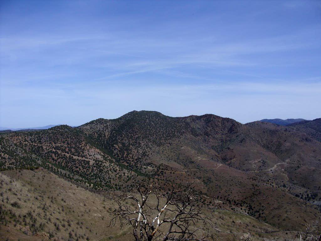Peak 7036 seen from Flowery Peak 6581'