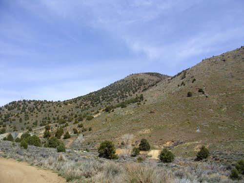 Flowery Peak from the parking area