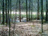 20100417 1325 river