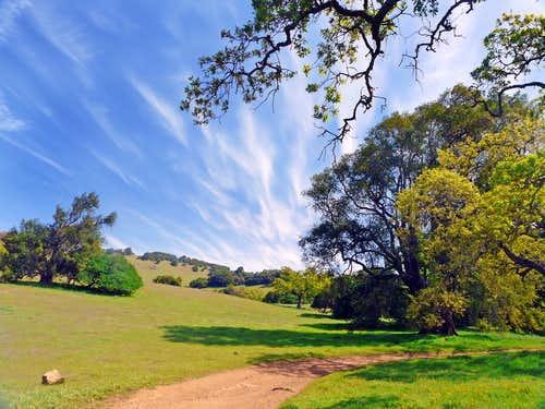 Burdell Mountain