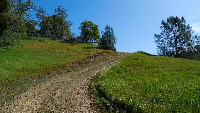 Near the top of Blue Ridge