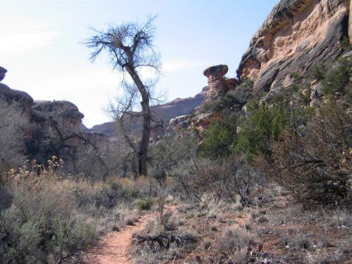 Lost Canyon Trail, Upper Portions