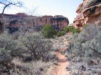 On Lost Canyon Trail, Lower Sections