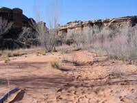 The Trail Enters Lost Canyon at this Spot