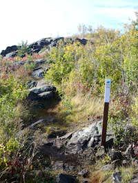 Ely's Peak Spur Trail