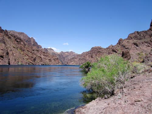 The Colorado River/Lake Mohave