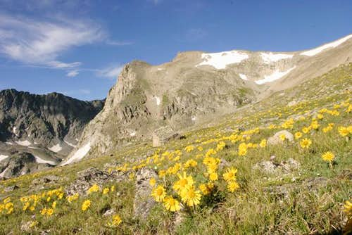 Shoshoni Peak and the typical...