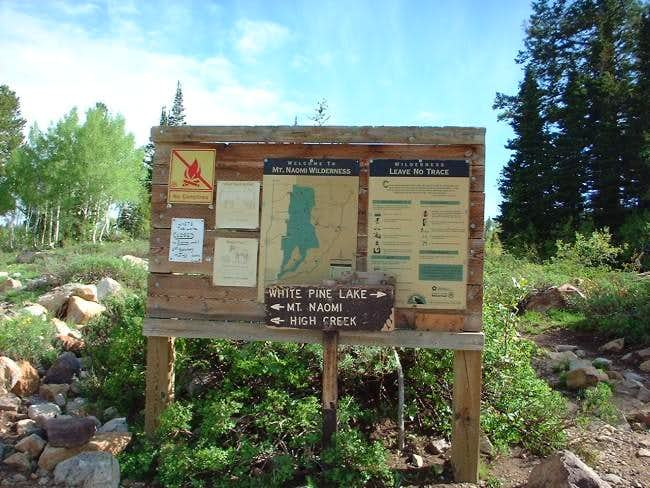 Forest Sign board, 0.25 of...