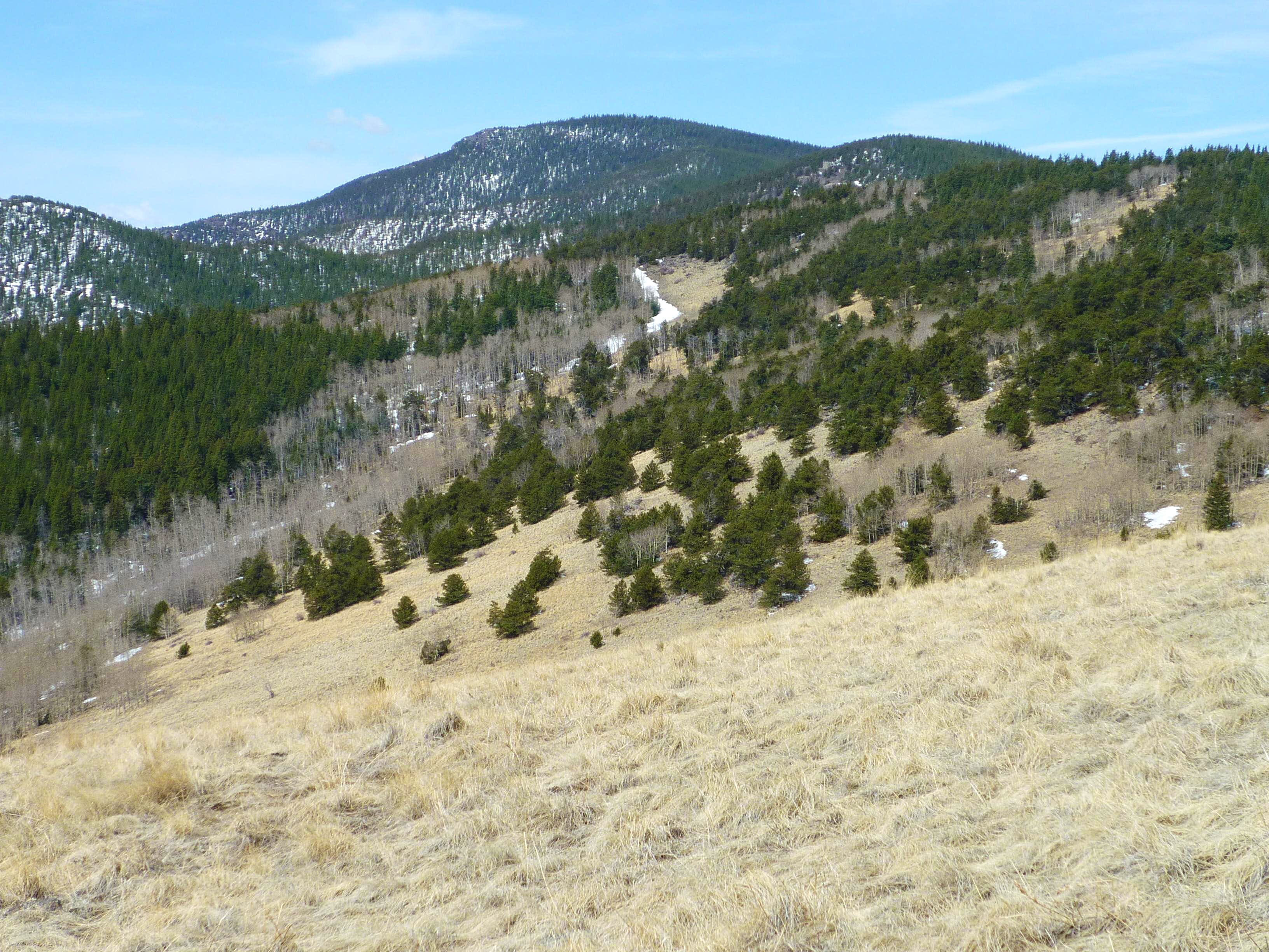 Thirtynine Mile Mountain
