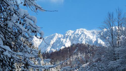 North ridge ( Piatra Craiului )