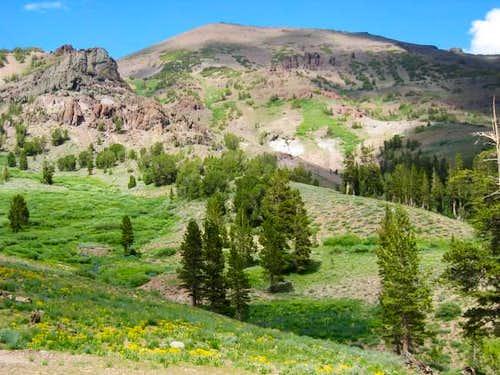 Sonora Peak near trailhead...