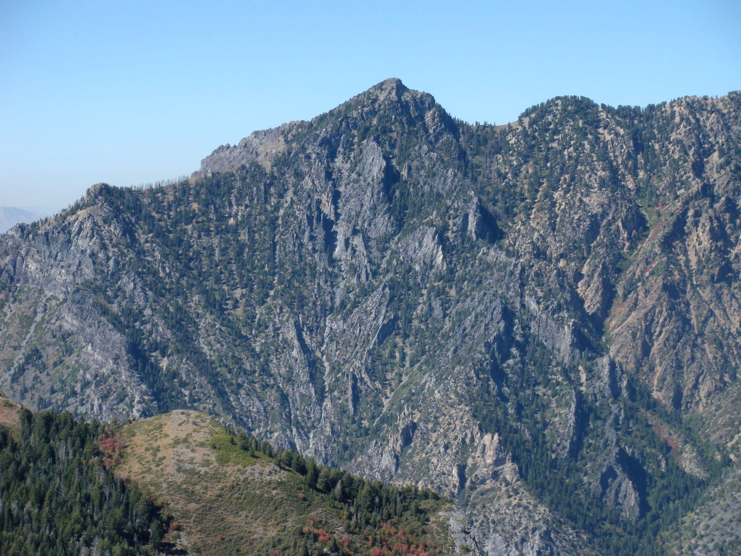 Willow Canyon Peak (Dharma Peak)