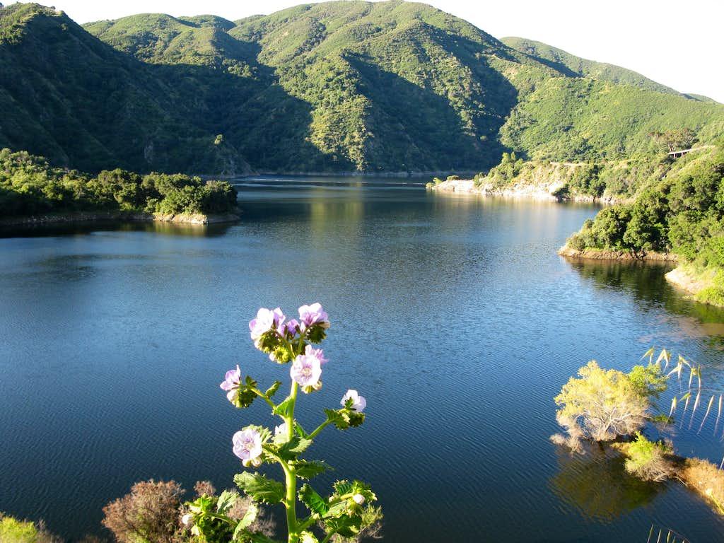 San Gabriel Reservoir