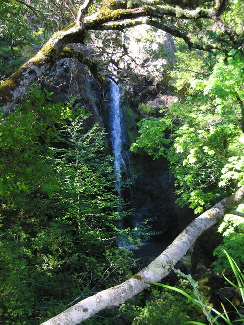 Lower Carson Falls