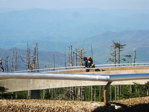Clingmans Dome 3