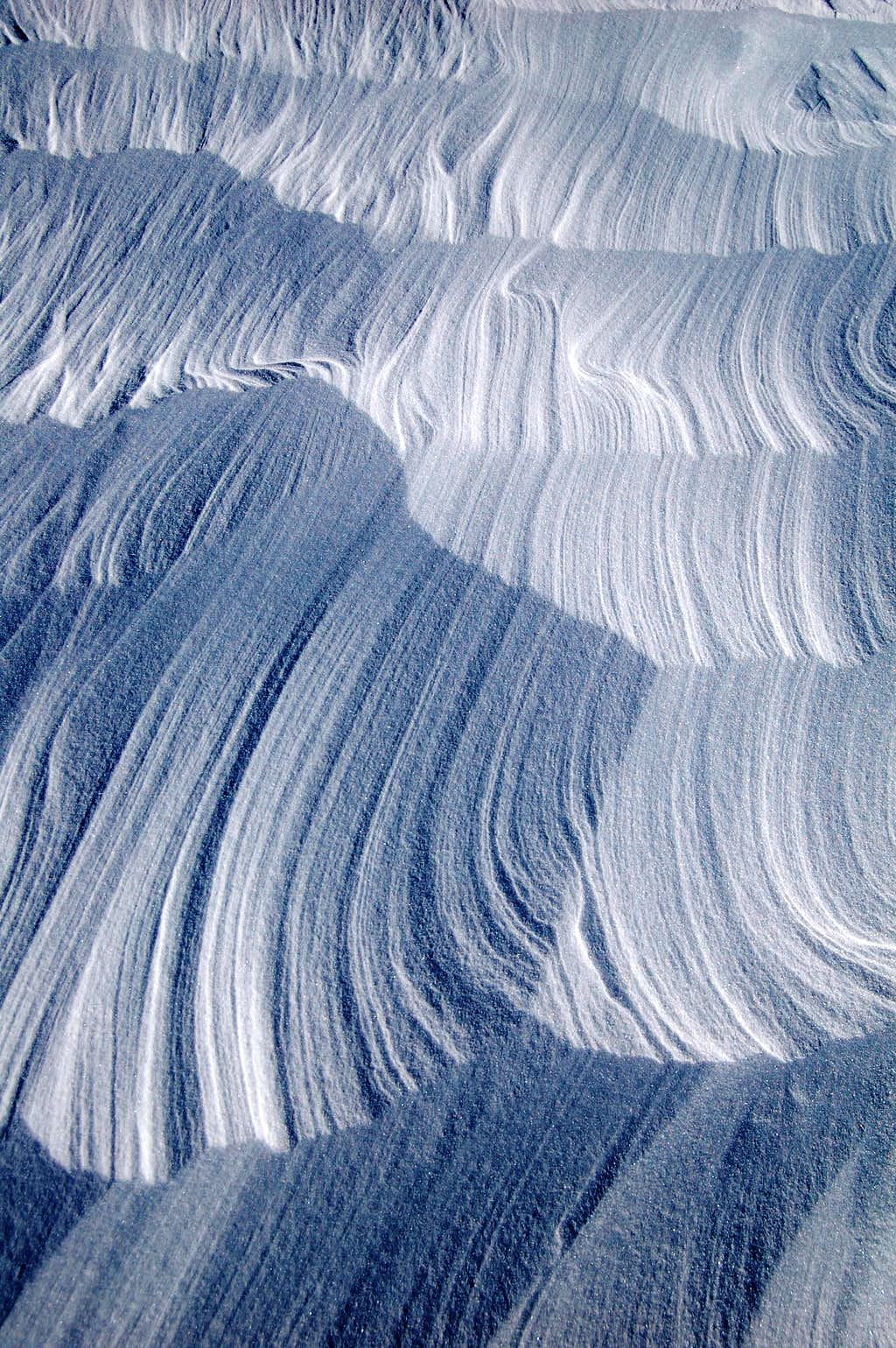 Wind Scoured Snow on the Bolam Glacier