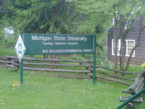 North Country Trail - Kellogg Experimental Forest to M-89