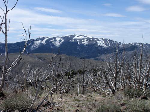 Tintic Mountain