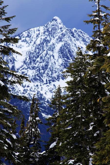 Hall Peak from Mount Forgotten Trail