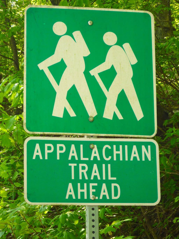 AT crossing at Woody Gap