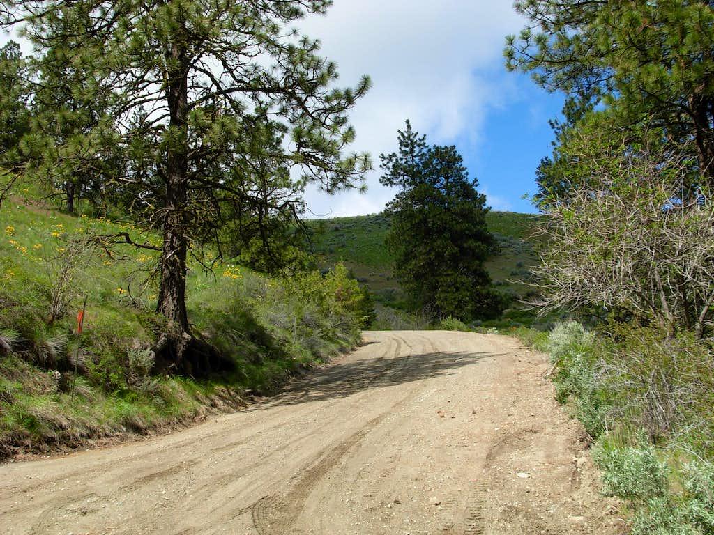 Chelan Butte Road