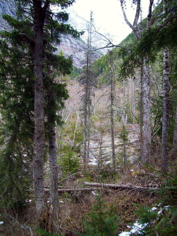 Hidden Lake Creek