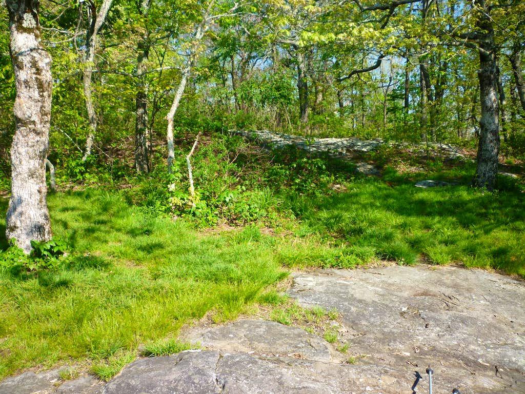 Grassy area near northern overlook