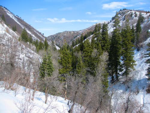 Icebox Canyon