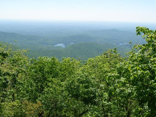 View South From Mount Oglethorpe