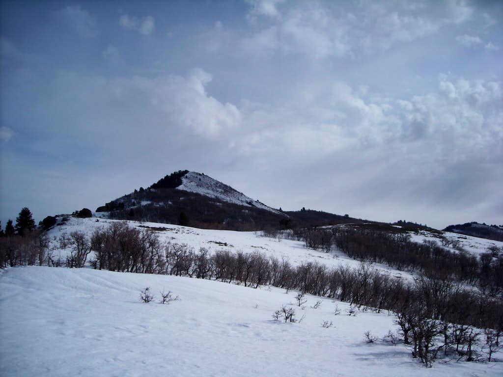 Sardine Peak