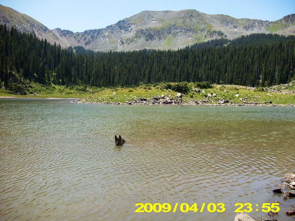 Zanto in Williams Lake