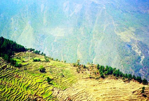 mountain terraces