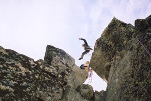 Making the leap between the...