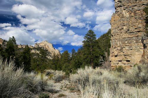Deadman's Canyon