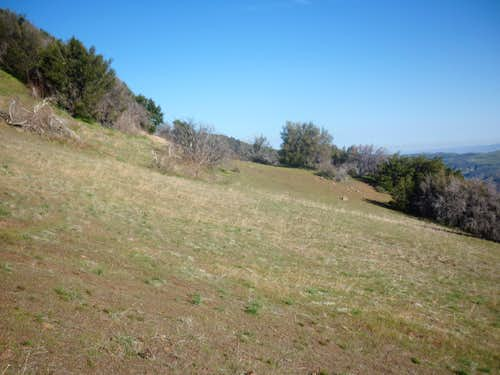 Meadow on Samon Peak