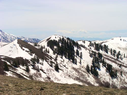 Eyrie Peak 8136'