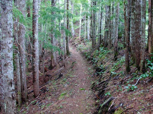 Mount Muller Trail