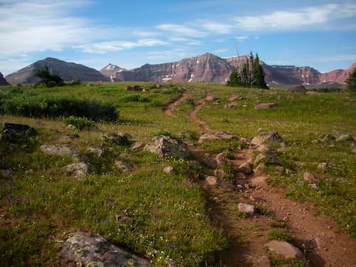 South Basin Wall and Kings Peak