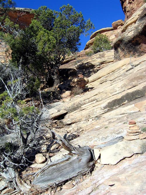 Slick Rock Slopes