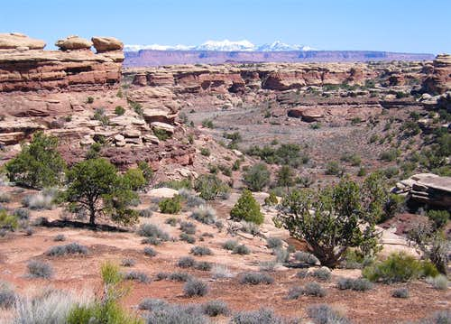 Elephant Canyon