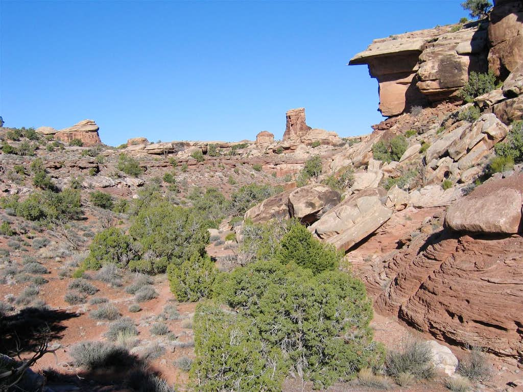 Hiking In Elephant Canyon