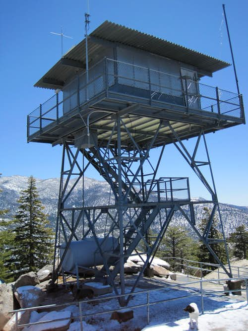 The Fire Tower