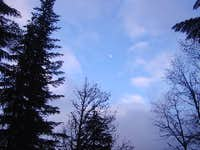 Moon in the Blue Sky