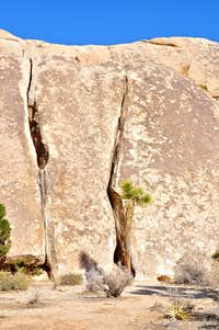 Peyote Cracks, west face